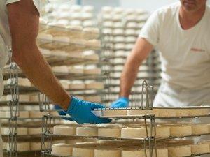 Un atelier de fabrication de fromage au programme du Salon de l'Agriculture