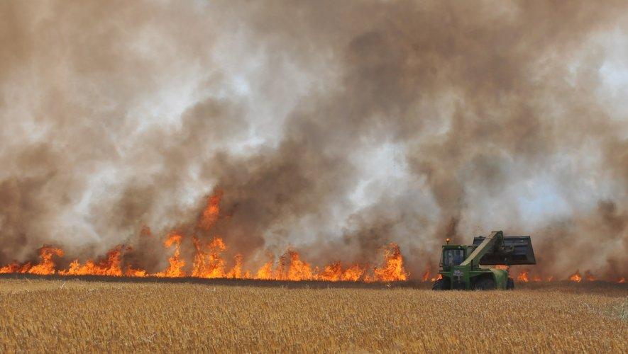 Un hectare a été la proie des flammes.