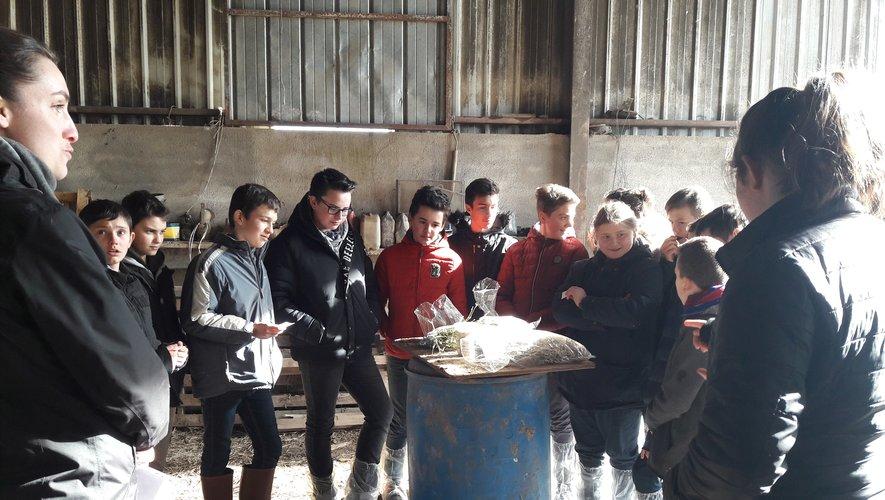 Le quotidien des agriculteurs a été expliqué aux collégiens.