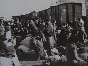 Les réfugiés espagnols ont dû surmonter mille épreuves, notamment la vie dans des camps de concentration et la séparation des familles.