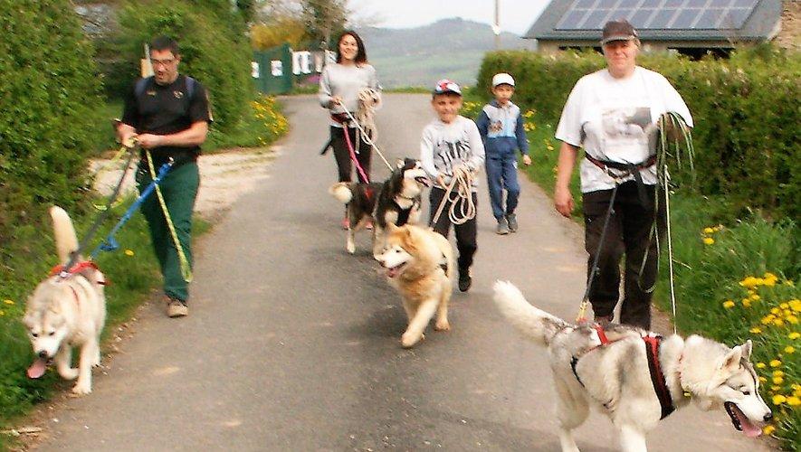 Avec ou sans chien, venez marcher pour le cœur.
