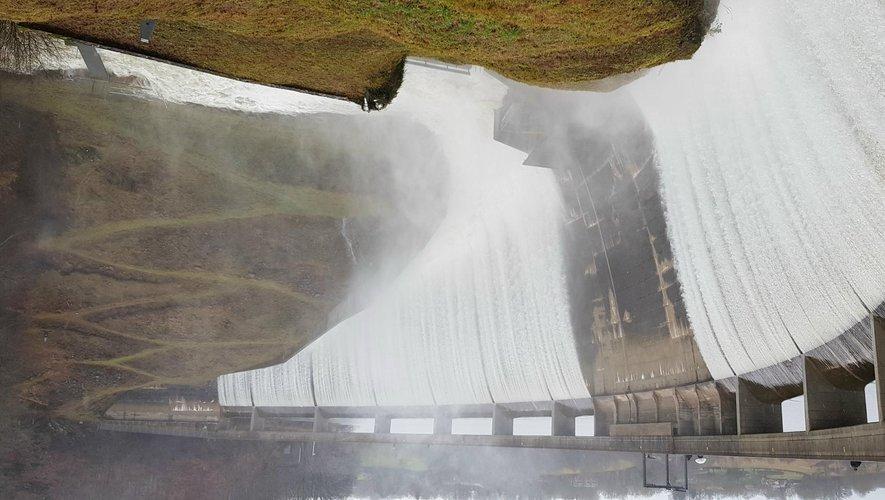 Les précipitations tombées en abondance l'an passé ont alimenté la production.