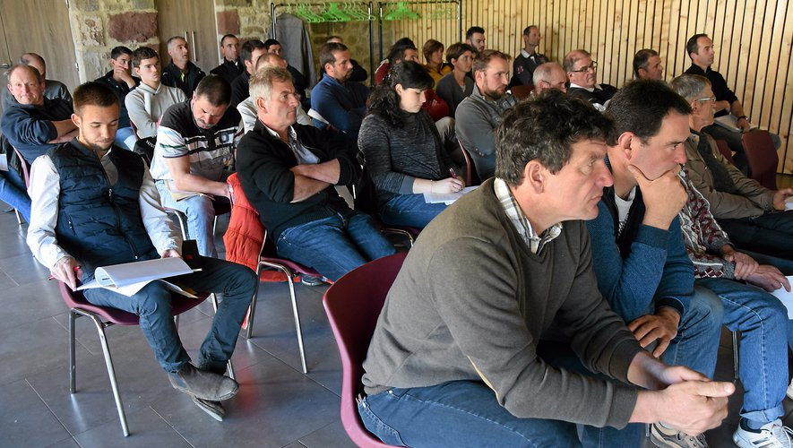 Les éleveurs de la race limousine étaient invités, jeudi 28 mars, à Sainte-Radegonde pour assister à l'assemblée générale du syndicat.