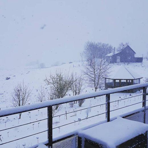 Ce mercredi matin, sur la terrasse de la Maison de l'Aubrac.