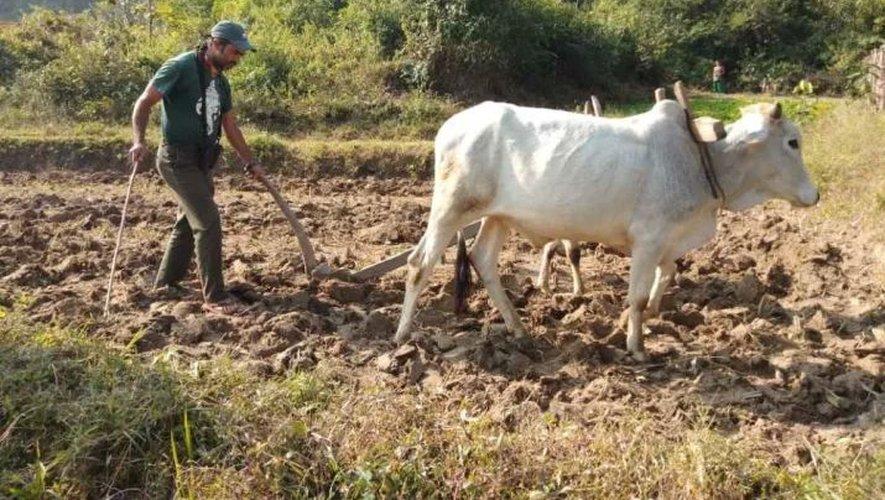 L'objectif de la cagnotte étant d'aider à la création d'une ferme responsable au Népal.