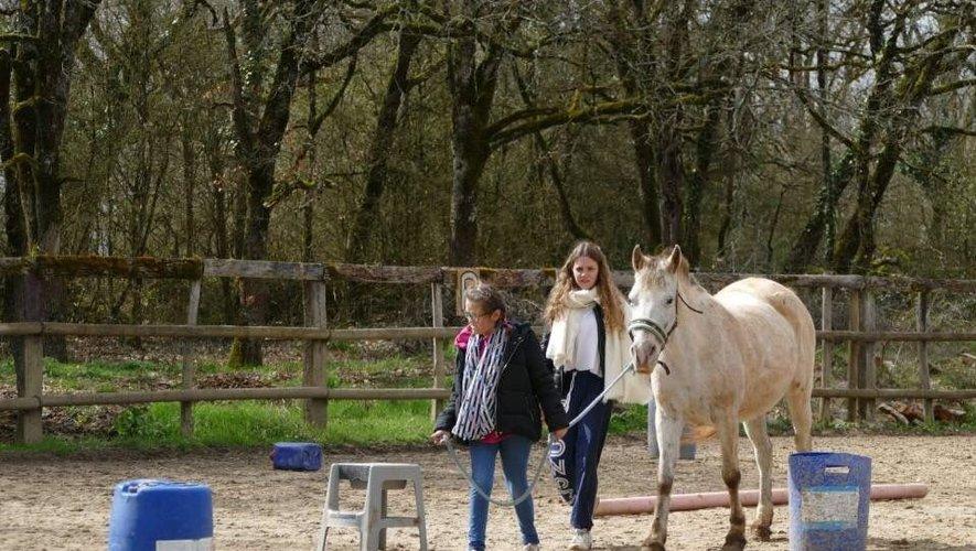 Une sensibilisation autour des animaux pour des jeunes en situation de handicap