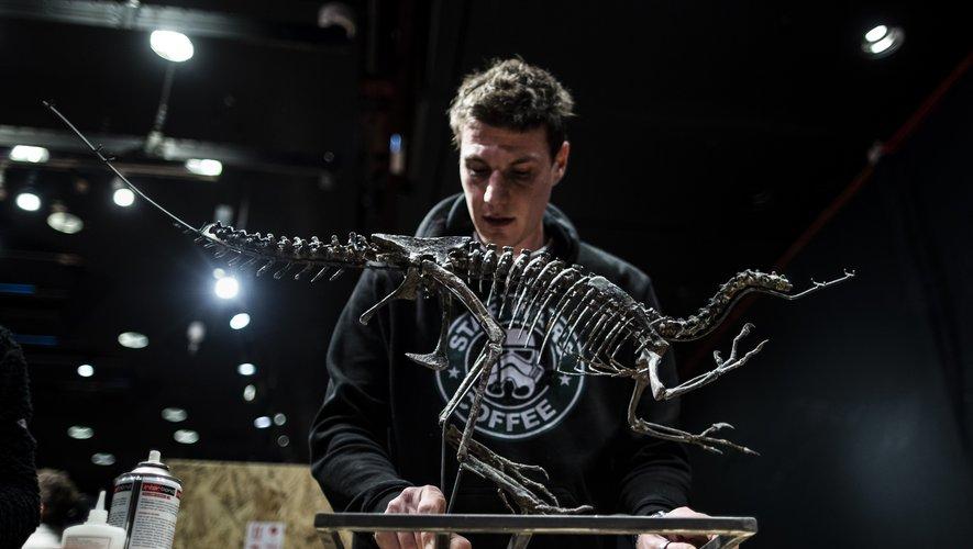 La squelette d'un Ornitholeste, l'un des plus agiles et féroces carnivores de la fin du Jurassique (environ -145 millions d'années avant Jésus-Christ), a été découvert dans l'État du Wyoming aux États-Unis.