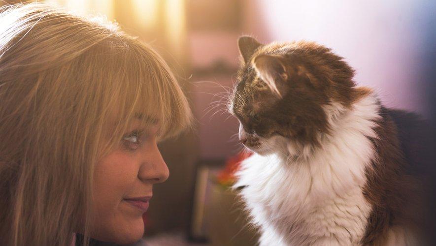Les chats qui s'aventurent à l'extérieur ont près de trois fois plus de risques d'être contaminés par divers parasites que ceux qui restent tranquillement à la maison, révèle une étude publiée mercredi.