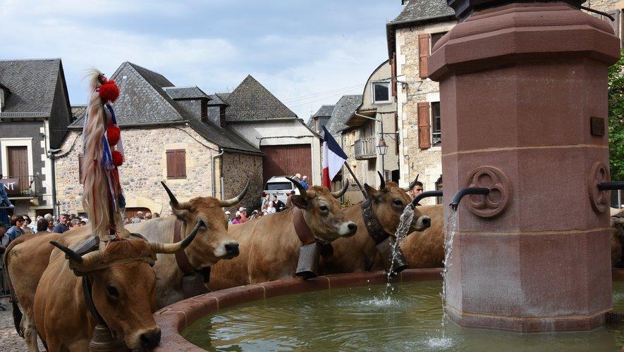 Du  Guzoutou ou pas, l'eau coulera à la fontaine pour le jour de la transhumance.