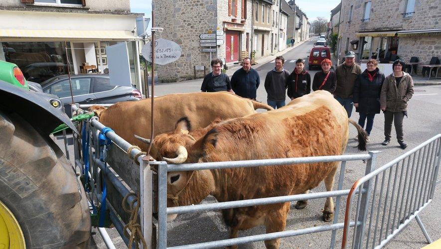 Nicolas, Jean-Claude et les éleveurs, (Gaec de la Bouscarie et Gaec d'Encassagnes) présentent les « Bœufs gras » de l'année.