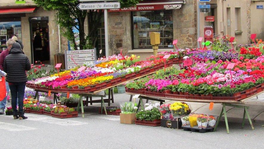 Adieu le marché aux fleurs et ses magnifiques couleurs…