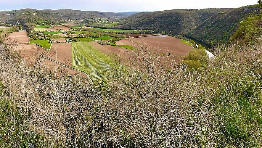 Le panorama sur le méandre du Lot vu du Saut de la Mounine.