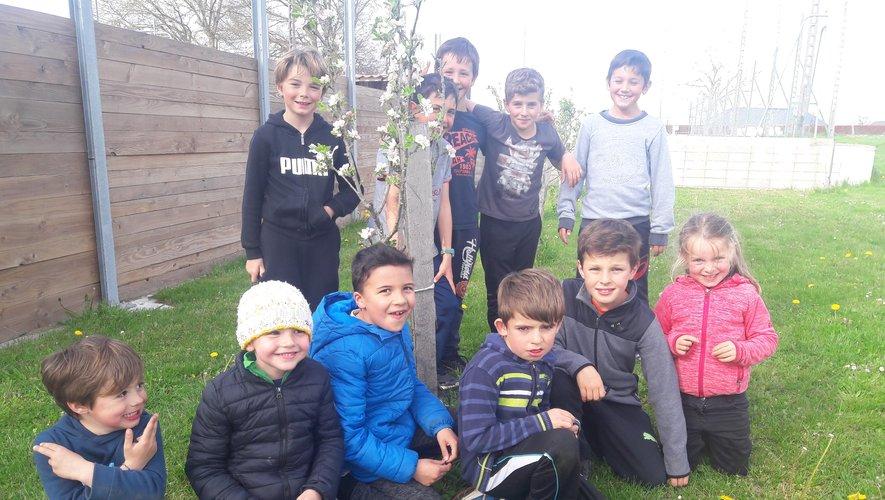 Les pommiers des enfants refleurissent chaque printemps