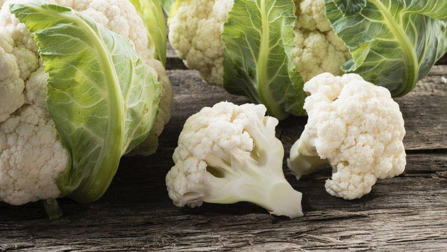 Le chou-fleur enregistre la plus forte hausse hebdomadaire (28%), tandis que les filets de cabillaud et de lieu noir voient leurs prix augmenter respectivement de 15% et de 10%.