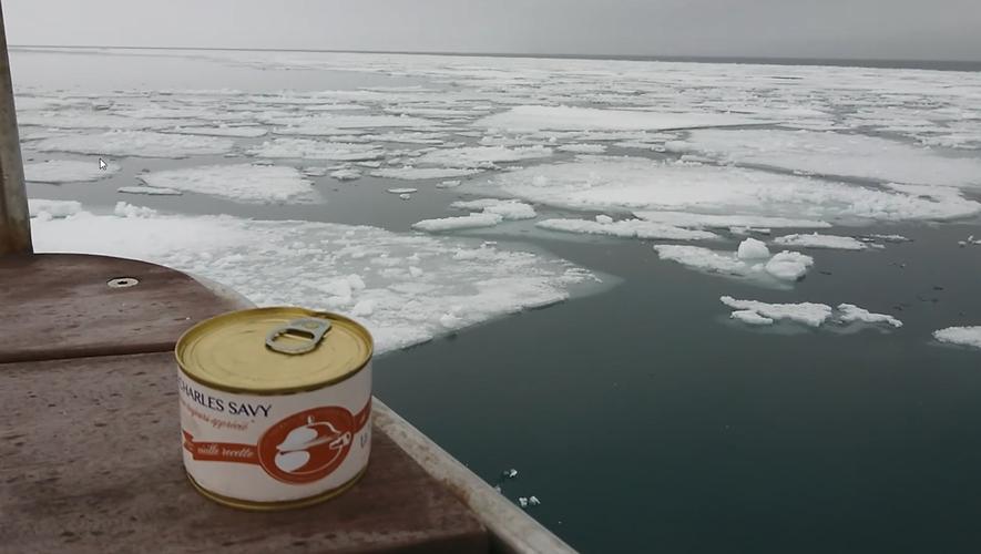 Des tripous  sur l'arctique