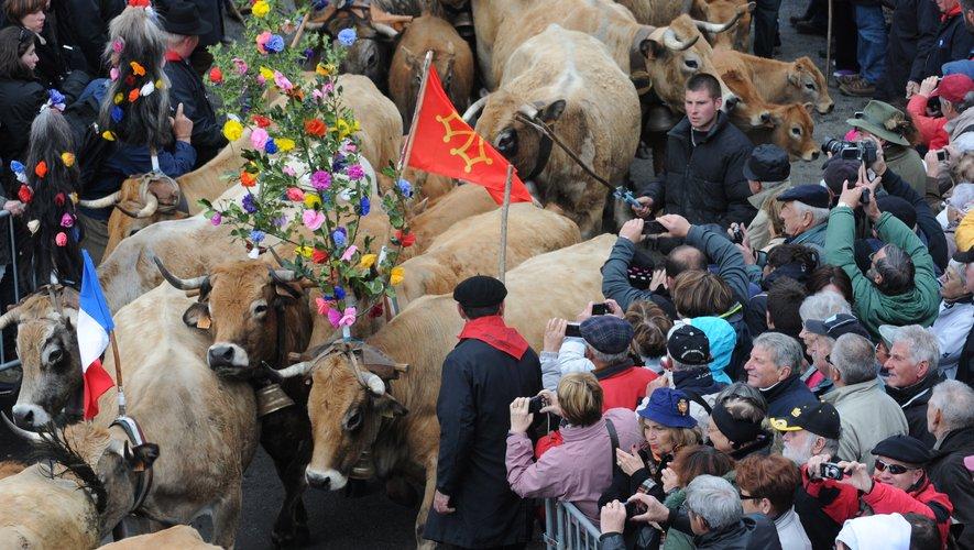C'est la fête des troupeaux et danses folkloriques à Saint-Côme