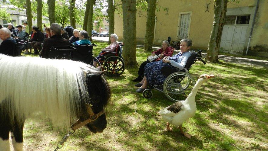 Une ferme animalière  s'est arrêtée à Rulhe