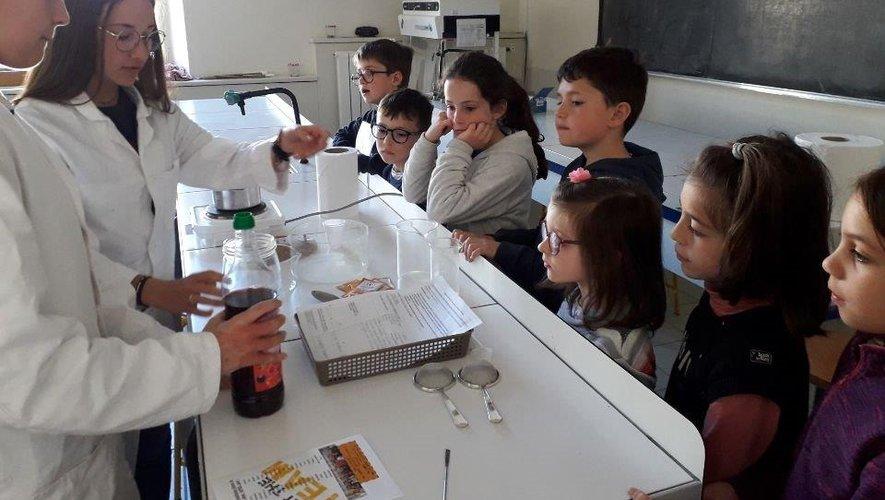 Les petits apprennent avec les grands lors d'ateliers variés.
