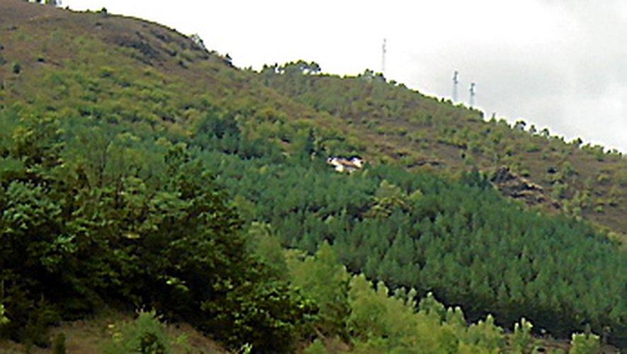 La gestion des bois et des forêts préoccupent les élus.