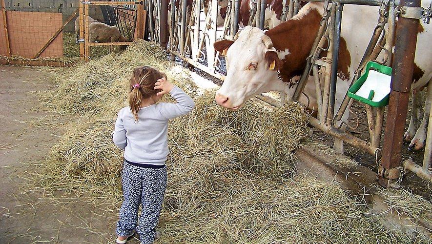 En Aveyron, 65 fermes sont adhérentes à la marque Bienvenue en Aveyron.