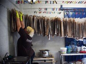 L'arrivée massive de sargasses sur la côte caraïbe mexicaine menace l'industrie touristique mais stimule aussi l'ingéniosité des entrepreneurs locaux.