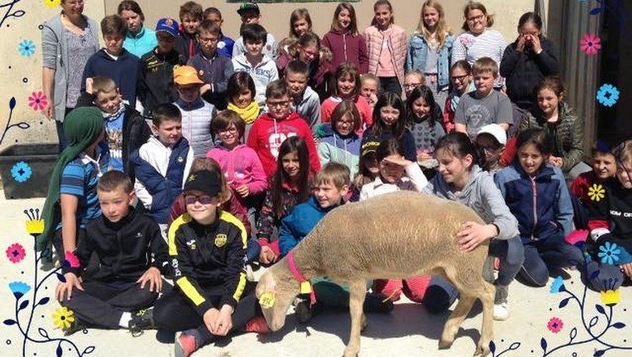 Les élèves de l'école Jules-Ferry en visite à la ferme