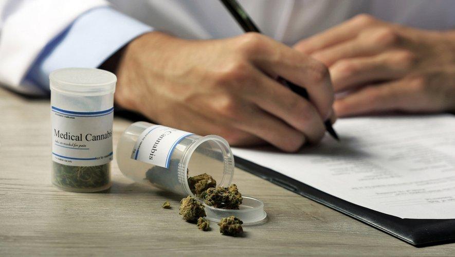 Cannabis thérapeutique : qu'en pensent les professionnels de santé ?