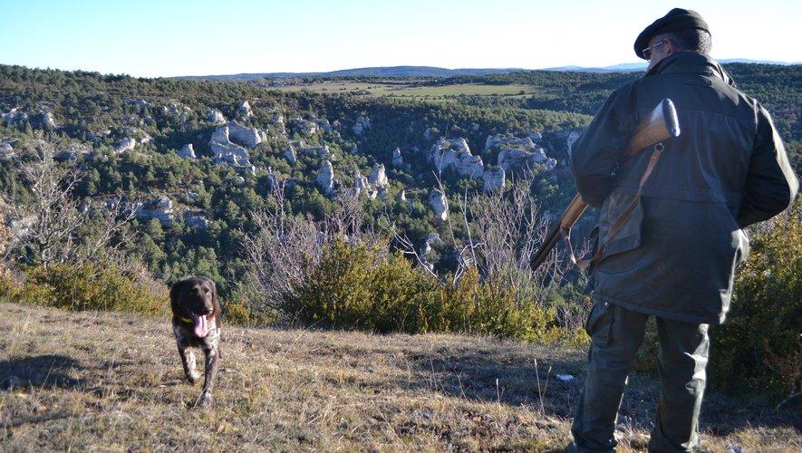 Les sociétés de chasse du Sud-Aveyron sont les plus touchées par le dispositif.