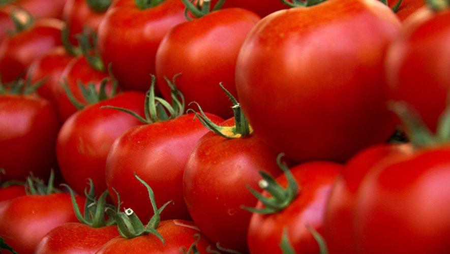 Cette semaine, le prix de la tomate ronde rouge grimpe en flèche avec une hausse de 18%.
