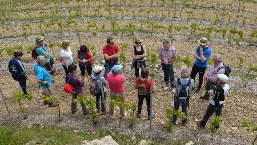 Une balade-découverte au cœur du vignoble d'Estaing guidée par le viticulteur Alain Ginisty.