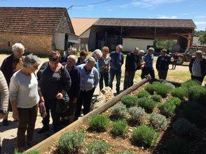 La visite de la ferme de la lavande a été très appréciée.