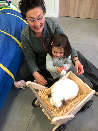 Qui n' a pas connu la douceur de caresser un lapin?