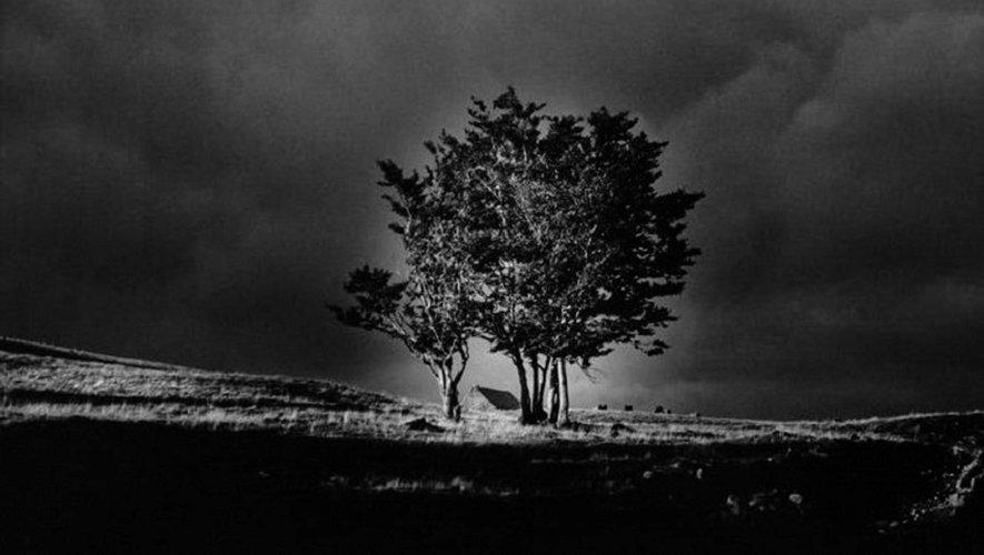 L'exposition de photographie « Ombres et lumières » de Michdel Bricchi est organisée par le Centre Européen de Conques.