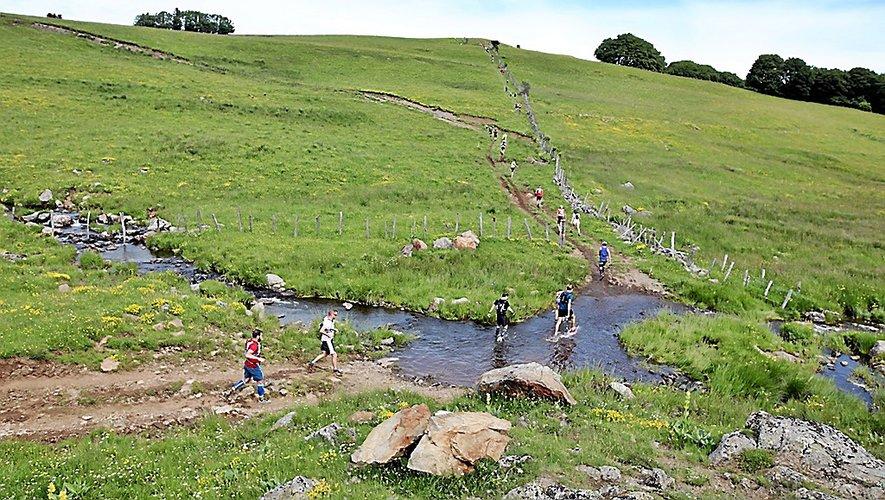 L'Aubrac servira une nouvelle fois de grand terrain de jeu aux coureurs de Trail en Aubrac.