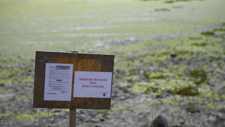 La mairie d'Hillion a interdit samedi pour une durée indéterminée l'accès à l'une de ses plages en raison d'échouages d'algues vertes.