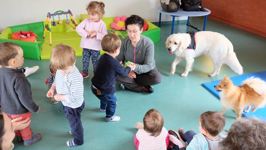 Un climat de confiance s'installe peu à peu entre les enfants et les animaux.
