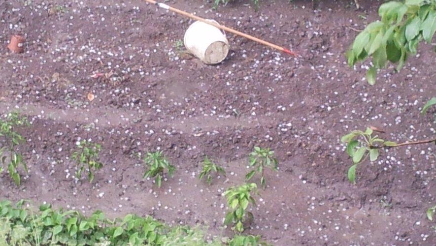 Un jardin du bord de l'Aveyron a été parsemé de grêlons mercredi soir.