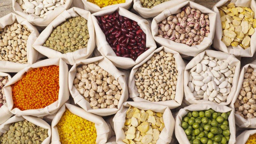 D'ici 10 ans, la planète devrait consommer plus de légumineuses, source de protéines