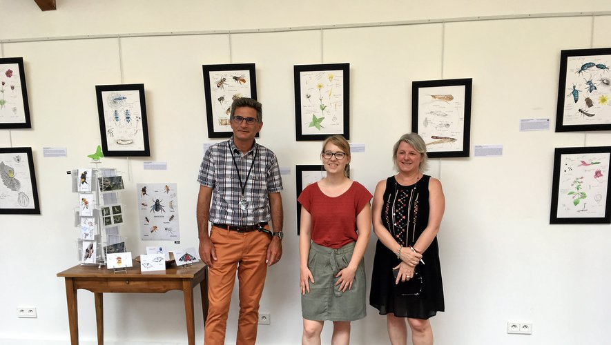 Micropolis accueille cet été l'exposition des planches de Lisa Chauvin cet été.