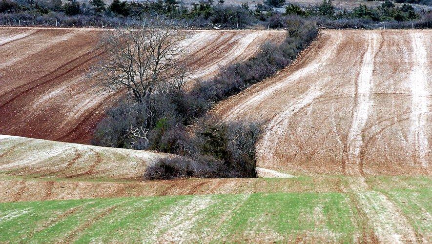Les précipitations attendues  à partir de vendredi prochain ne suffiront pas à combler le déficit en eau.
