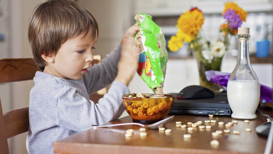 L'expérience a montré que les enfants à qui l'on a offert le plus de collations différentes et en plus grandes quantités ont consommé une masse alimentaire un peu plus importante que les autres.