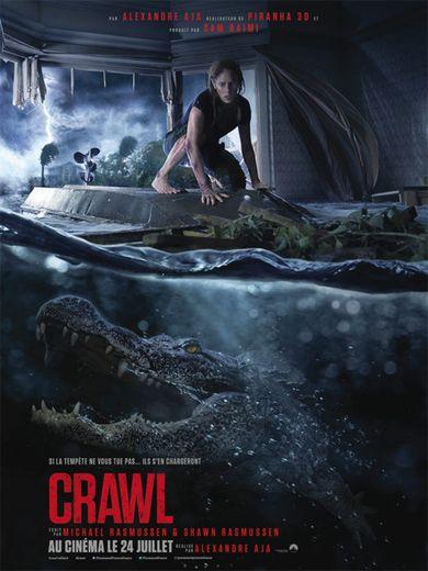 """""""Crawl"""" d'Alexandre Aja avec Kaya Scodelario est sorti le 12 juillet dernier aux Etats-Unis."""