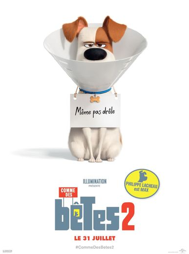 """Philippe Lacheau (""""Alibi.com"""") prête sa voix au personnage de Max dans """"Comme des bêtes 2""""."""