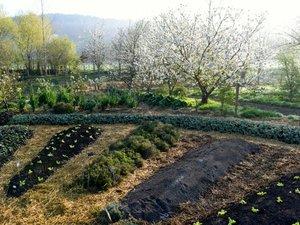 Un documentaire sur la permaculture  cette semaine au Rex