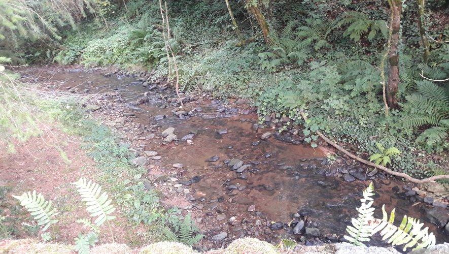 Le ruisseau de Bourran aussi appelé ruisseau du Moulinet.