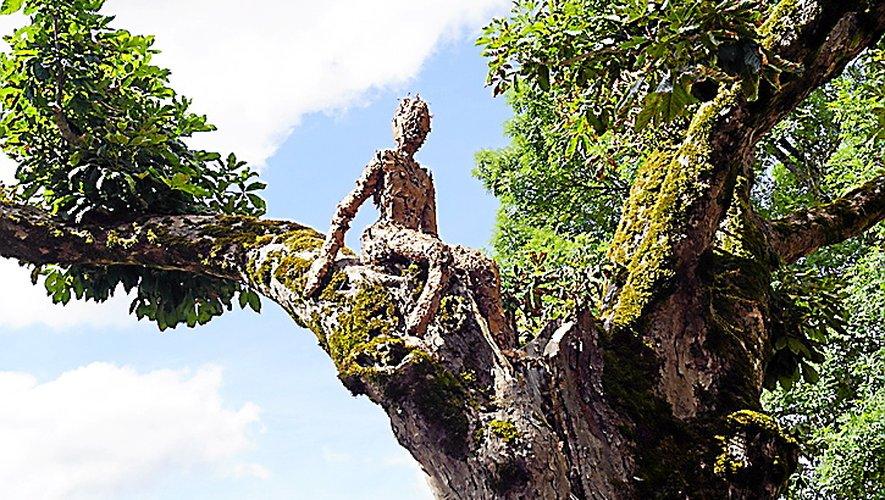 Un de ces êtres perché dans un arbre à Sainte-Fauste.