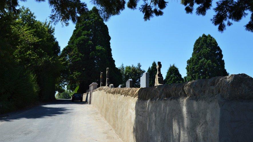 Le mur d'enceinte et les séquoias géants.