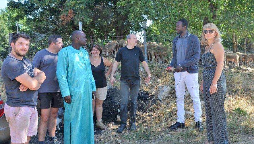 Visite de découverte, pour Issakha Diop maire de Pikine, deuxième ville du Sénégal, dans une ferme de production ovin lait bio.