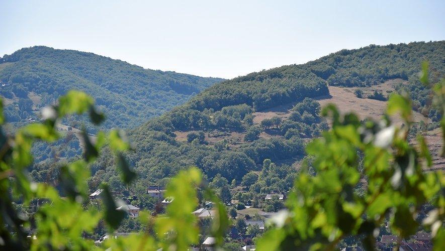 Le parcours balisé Terra Trail, qui s'élancede Saint-Christophe, permet de découvrir les vignobles  et les paysages du Vallon d'une manière originale.