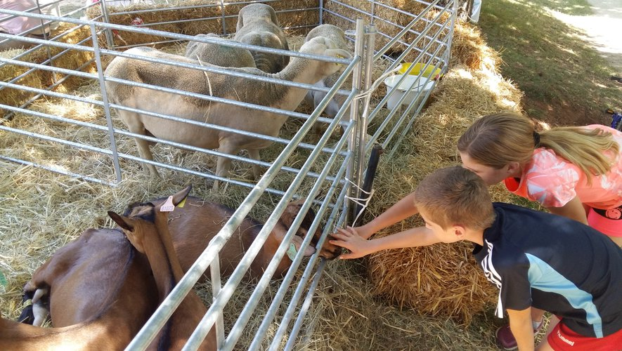Les Jeunes agriculteurs attendent les enfants à Rodez Plage.